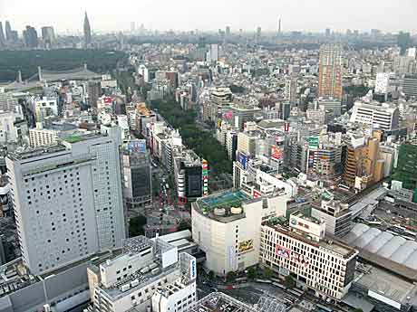 セルリアンタワーから渋谷を眺めてみれば|渋谷文化プロジェクト