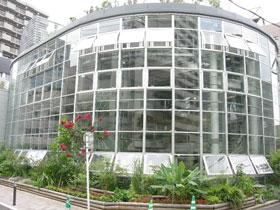 渋谷区ふれあい植物センター